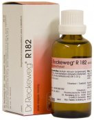 Dr.Reckeweg R182 50ml
